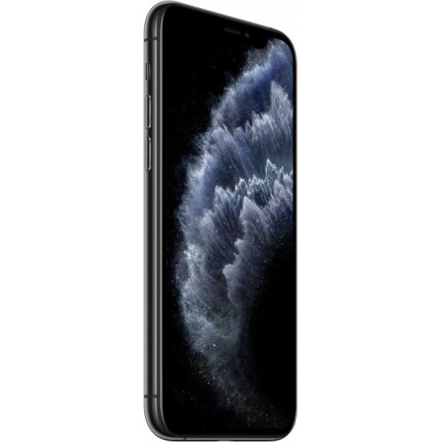 Apple iPhone 11 Pro Max 256GB Dual SIM (серый космос) фото 3