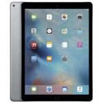 Apple iPad Pro 256GB Space Gray фото 1